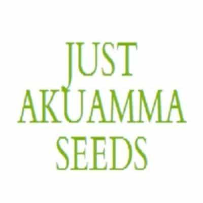 just-akuamma-seeds-15699985-la